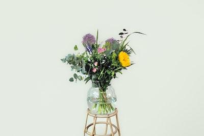 Høj vild buket i årstiden farver og blomster